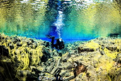 Land of fire and ice/ A diver exploring Iceland's incredi... by Devon Fox