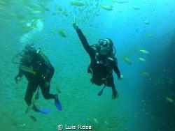 HTMS CHANG dive site. by Luis Rosa