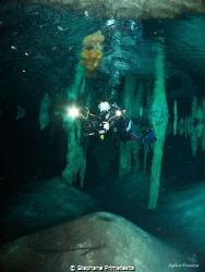 Cenote by Stephane Primatesta