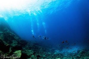 Divers at San Pedro Nolasco in San Carlos, Sonora, Mexico... by Laurie Slawson