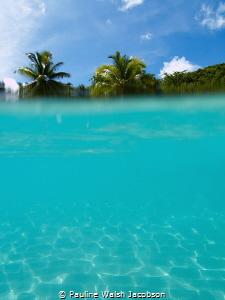 Hawksnest Bay, St. John, U.S. Virgin Islands by Pauline Walsh Jacobson