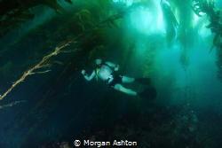 Texas + Beer + Cold Water Diving = This. by Morgan Ashton