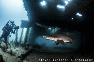 This image was taken on the Aeolus off North Carolina. ... by Steven Anderson