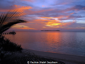 Sunset, Wakatobi, Indonesia by Pauline Walsh Jacobson