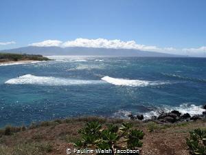 Surfers and Windsurfers, Hookipa, Maui, Hawaii by Pauline Walsh Jacobson