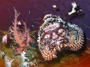 Inner Space Alien,  scorpionfish red sea, photoshopped by Peter Harris