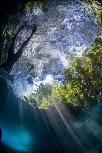 Swiming in the River, Las Estacas México by Alejandro Topete