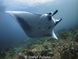 Span