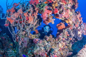 Elvira in the Reef, Veracruz Mexico by Alejandro Topete