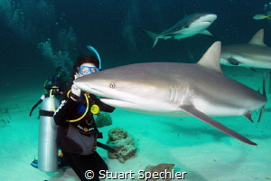 Young diver with photobomber.  Awesome experience! by Stuart Spechler