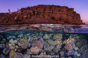 The best of 2 worlds, Sharm El Sheiklh: below and above. by Stefaan Haegeman