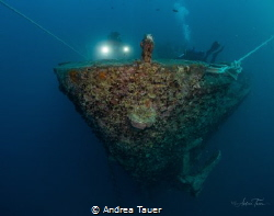 Old Lady Thistlegorm by Andrea Tauer