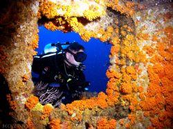 Wreck of the Hydro Atlantic, Pampano beach FL by Becky Kagan