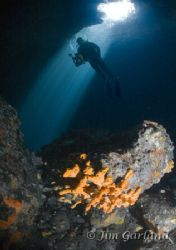 Blue Hole - What can I say, brilliant dive! by Jim Garland