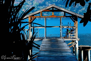 Waiting for the Dive Boat/Photographed at Alami Alor Reso... by Laurie Slawson