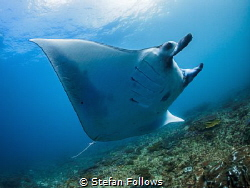 Come fly with me ...