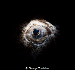 Stargazer Eye!!! by George Touliatos