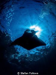 Bubbalicious