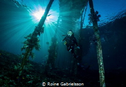 My 12-year old daughter diving Raja Ampat! by Roine Gabrielsson