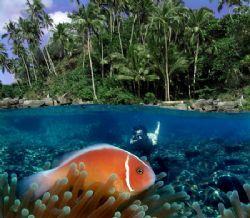 Kilang Beach, Soutern Molluca, Indonesia. Molluca provinc... by Iman Brotoseno