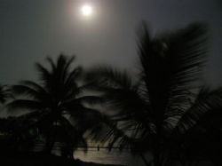 Casa Tranquila at night - Stary, stary night in Utila. by Lisa Armstrong