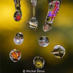 Water droplets by Michal Štros