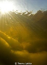 Freezing clump at the bottom of the Kymijoki river.  Free... by Teemu Lakka