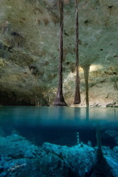 Cenote Tacbi-Ha (Hidden Water) in Tulum (Mexico) ISO 1600... by Pablo Gutierrez