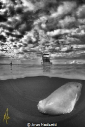 just cruising (taken under permit) by Arun Madisetti