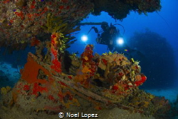 small wreck, and a diver, nikon D800E ,tokina lens 10-17m... by Noel Lopez