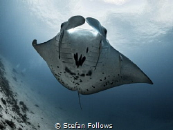 Careen