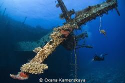 Wreck Salem Express. Mast. by Oxana Kamenskaya