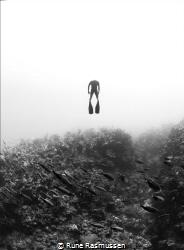 Aquaman by Rune Rasmussen