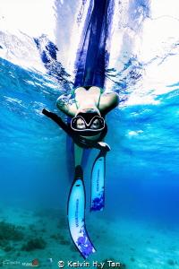 Freediver by Kelvin H.y Tan