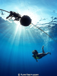 swimming in the light rays by Rune Rasmussen