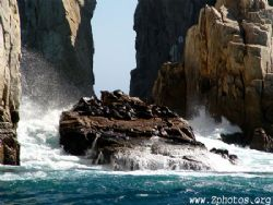 Off of Cabo San Lucas there are many sea lions and they s... by Zaid Fadul