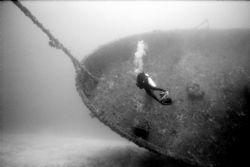 Pam on the Bibb - Key Largo wreck a US Coast Gaurd Cutter... by Michael Salcito