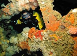 Diver looking through part of the bows of the Hathor - Is... by Malcolm Nimmo