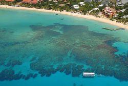 Glass bottom boat touring the reef of Roatan, Honduras. by Shawn Jackson