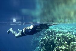 'FIRST SNORKLE' Between dives at Ant Atoll, Pohnpei, I to... by Rick Tegeler