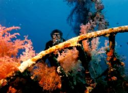 Wreck with soft coral, Nikonos V with 28mm lense. by Marylin Batt