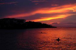 Roatan, Honduras. by Shawn Jackson