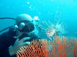My buddy Flo with a Common Lionfish, Garang Heng, Phi Phi... by Tobias Reitmayr