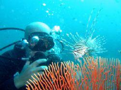 My buddy Flo with a Common Lionfish, Garang Heng, Phi Phi... by Tobias Reitmayr