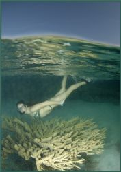 some fun with hard coral heads in Egypt July 2006, taken ... by Fiona Ayerst