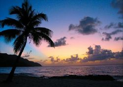 Sunset at Carambola on St Croix, USVI.