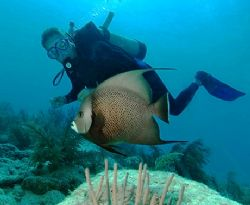 Diver and Angelfish, Marathon Key, Florida. D70, 10.5 mm ... by David Heidemann