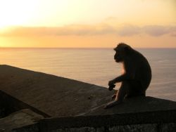 Ah...sunset by the sea. Taken at Bali, Indonesia. by Mohan Thanabalan