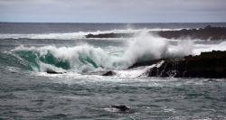 Crashing Wave. Photo taken at Sharks Cove, HI. by Mathew Cook