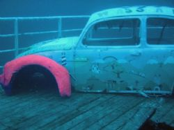 An old Beetle on a new wreck off the coast of Gozo taken ... by Peter Dreyer